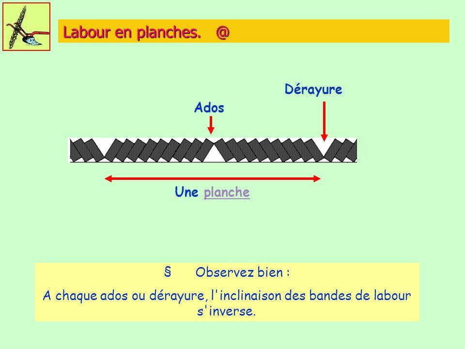 Labour en planches. @ Une plancheplanche Ados Dérayure § Observez bien : A chaque ados ou dérayure, l'inclinaison des bandes de labour s'inverse.