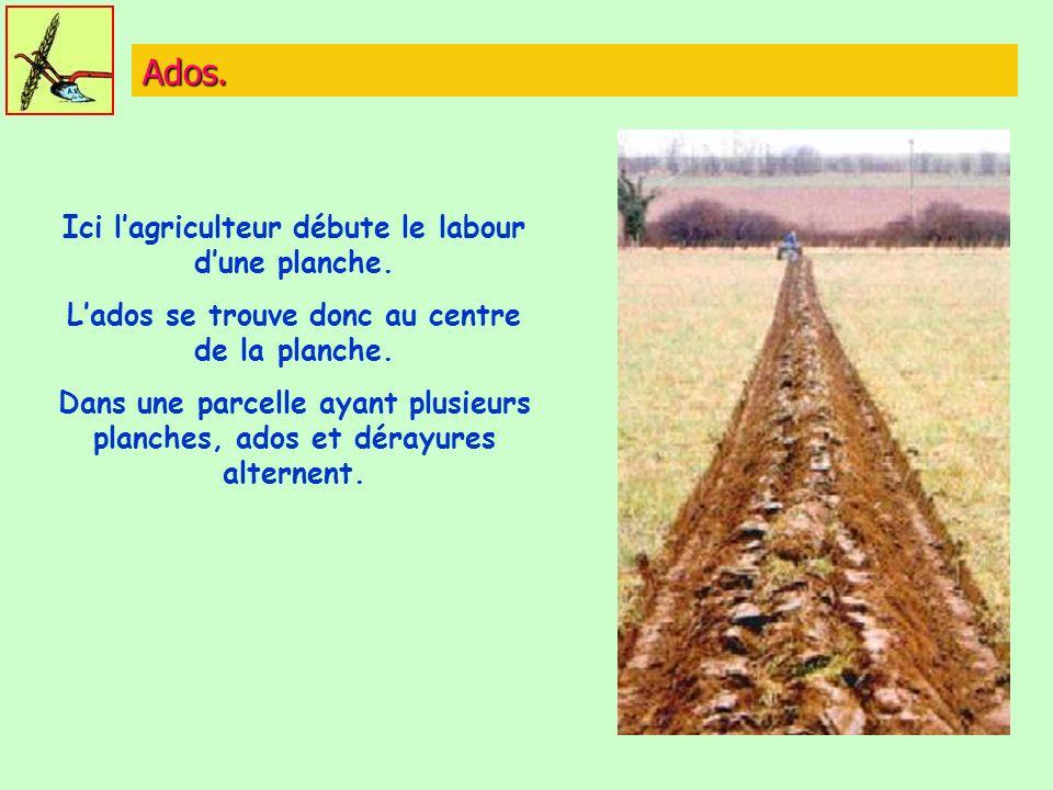 Ados. Ici lagriculteur débute le labour dune planche. Lados se trouve donc au centre de la planche. Dans une parcelle ayant plusieurs planches, ados e
