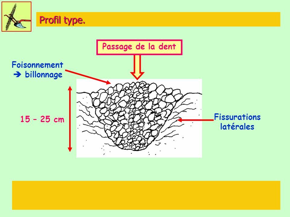 Profil type. Passage de la dent Foisonnement billonnage Fissurations latérales 15 – 25 cm