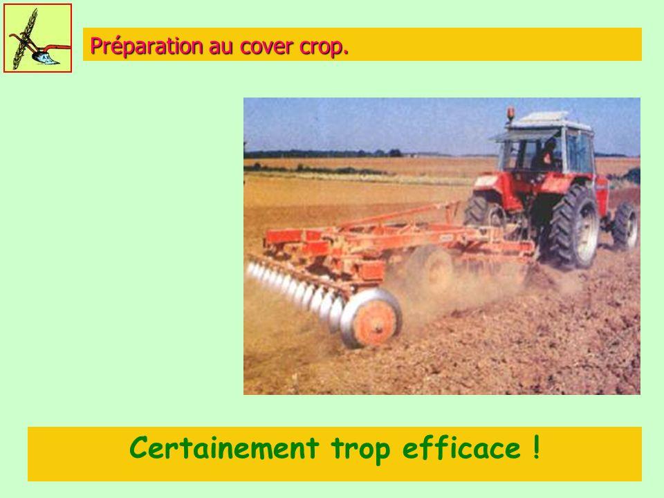 Préparation au cover crop. Certainement trop efficace !