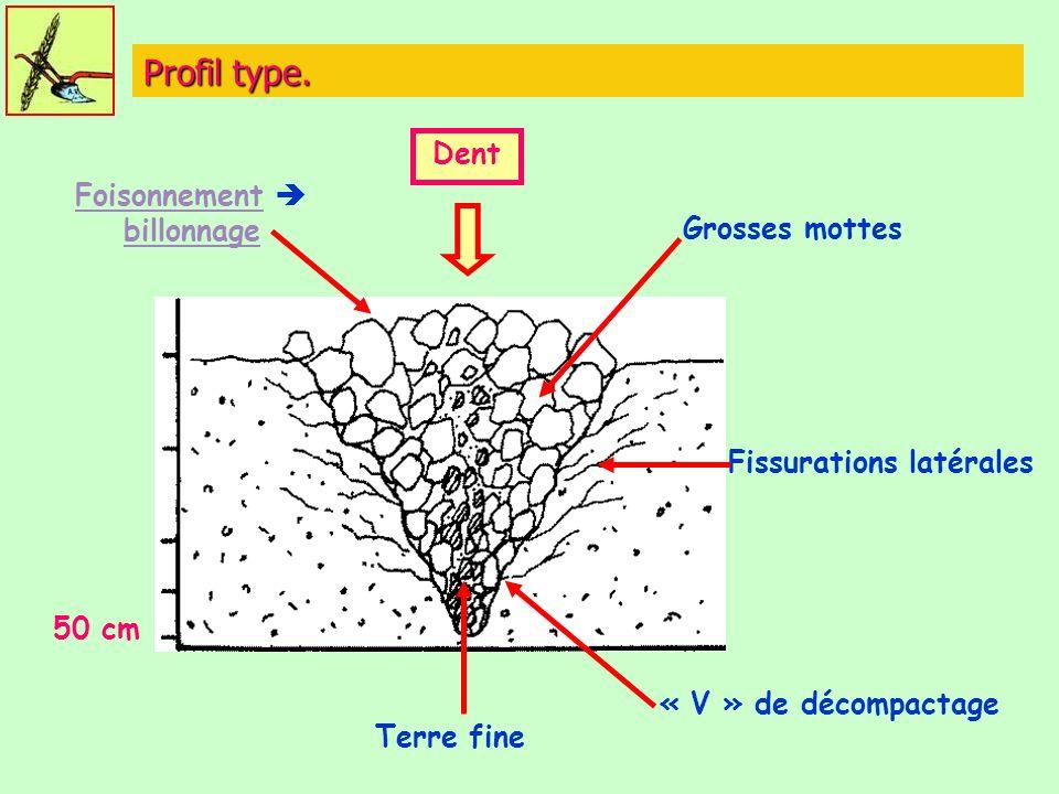 Profil type. Dent Grosses mottes Fissurations latérales « V » de décompactage Terre fine 50 cm FoisonnementFoisonnement billonnage billonnage