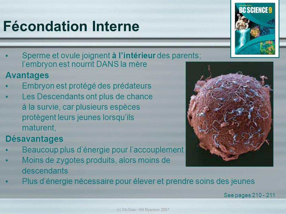 (c) McGraw Hill Ryerson 2007 Fécondation Interne Sperme et ovule joignent à lintérieur des parents; lembryon est nourrit DANS la mère Avantages Embryo