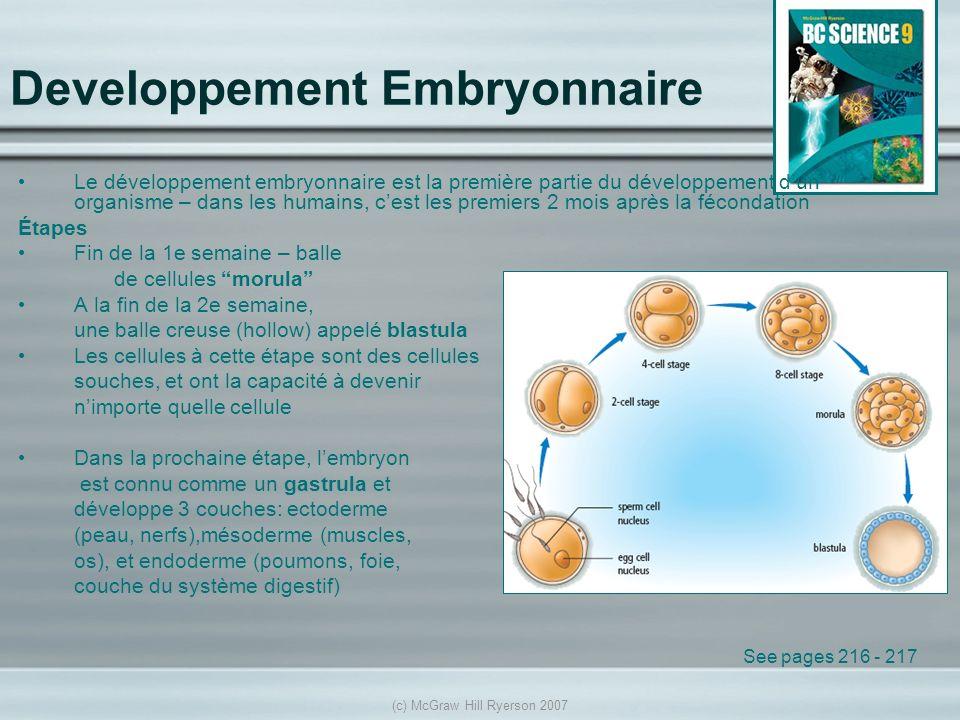 (c) McGraw Hill Ryerson 2007 Developpement Embryonnaire Le développement embryonnaire est la première partie du développement dun organisme – dans les