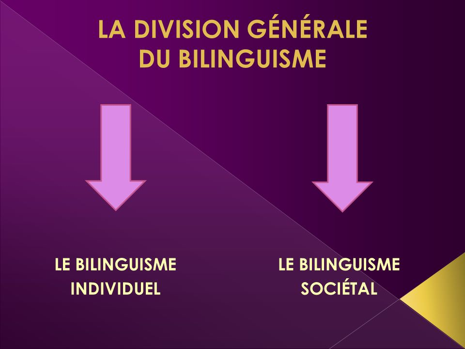 LA DIVISION GÉNÉRALE DU BILINGUISME LE BILINGUISME INDIVIDUEL LE BILINGUISME SOCIÉTAL
