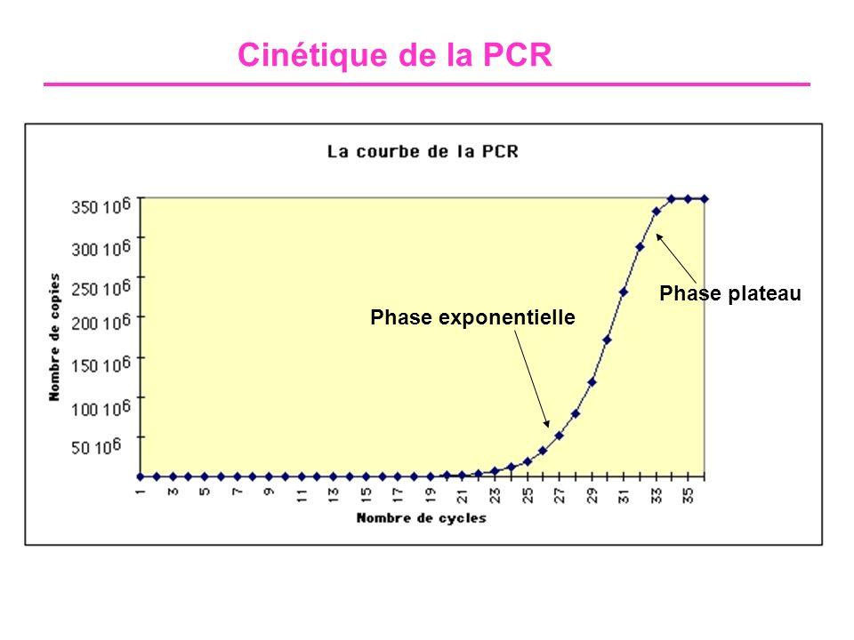 - Haute précision pendant la phase exponentielle - Variabilité importante à la phase plateau PCR en temps réel PCR classique en point final PCR conventionnelle versus en temps réel