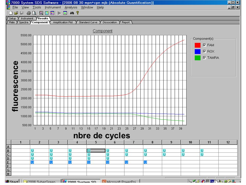 fluorescence nbre de cycles