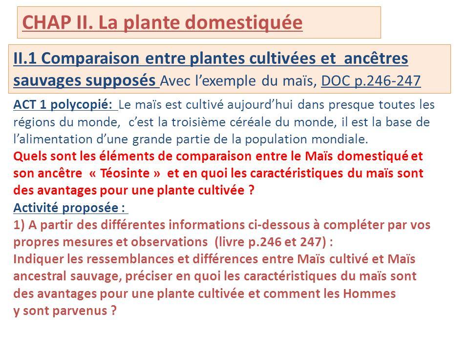 II.1 Comparaison entre plantes cultivées et ancêtres sauvages supposés Avec lexemple du maïs, DOC p.246-247 ACT 1 polycopié: Le maïs est cultivé aujou