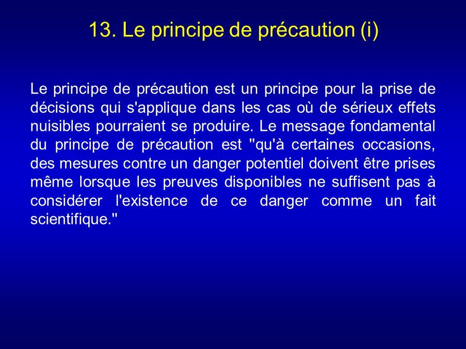 13. Le principe de précaution (i) Le principe de précaution est un principe pour la prise de décisions qui s'applique dans les cas où de sérieux effet