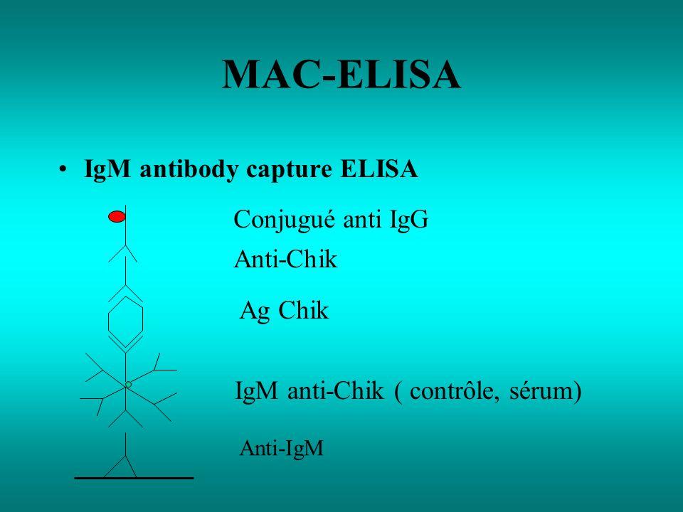 MAC-ELISA IgM antibody capture ELISA Anti-IgM IgM anti-Chik ( contrôle, sérum) Ag Chik Anti-Chik Conjugué anti IgG