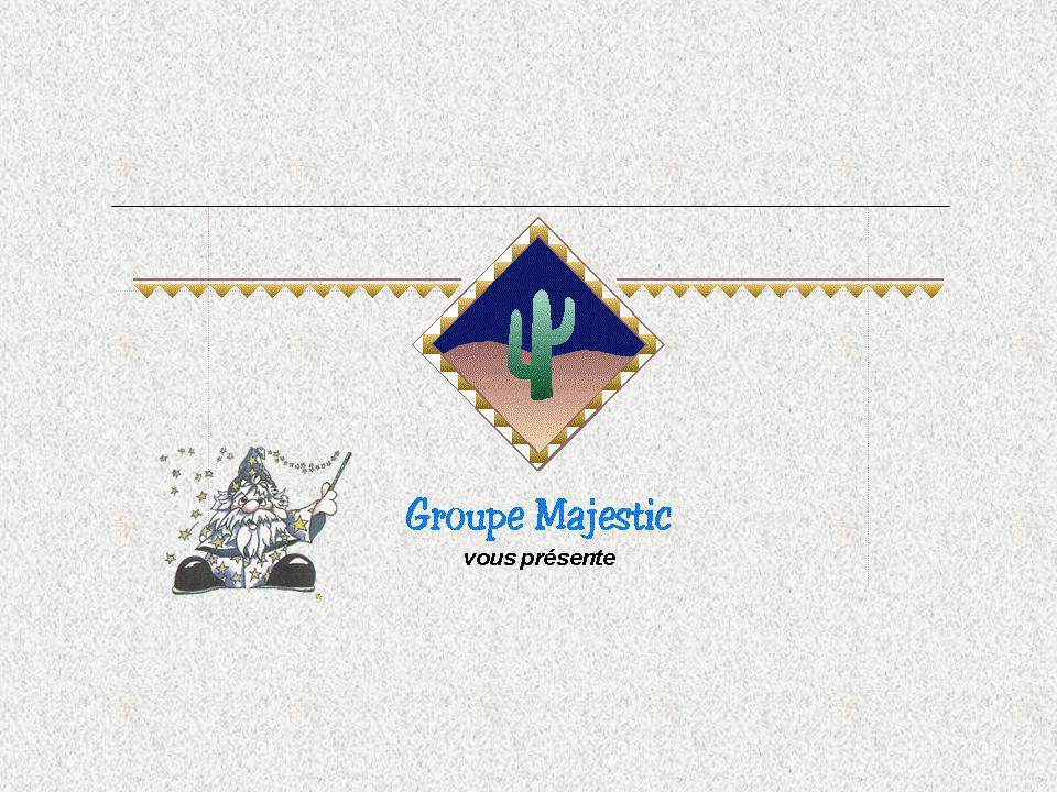 Lunicité de cette application Ce nest pas un logiciel mais bien une application internet développée par les services de Groupe Majestic.
