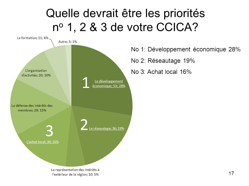 17 Quelle devrait être les priorités n o 1, 2 & 3 de votre CCICA.