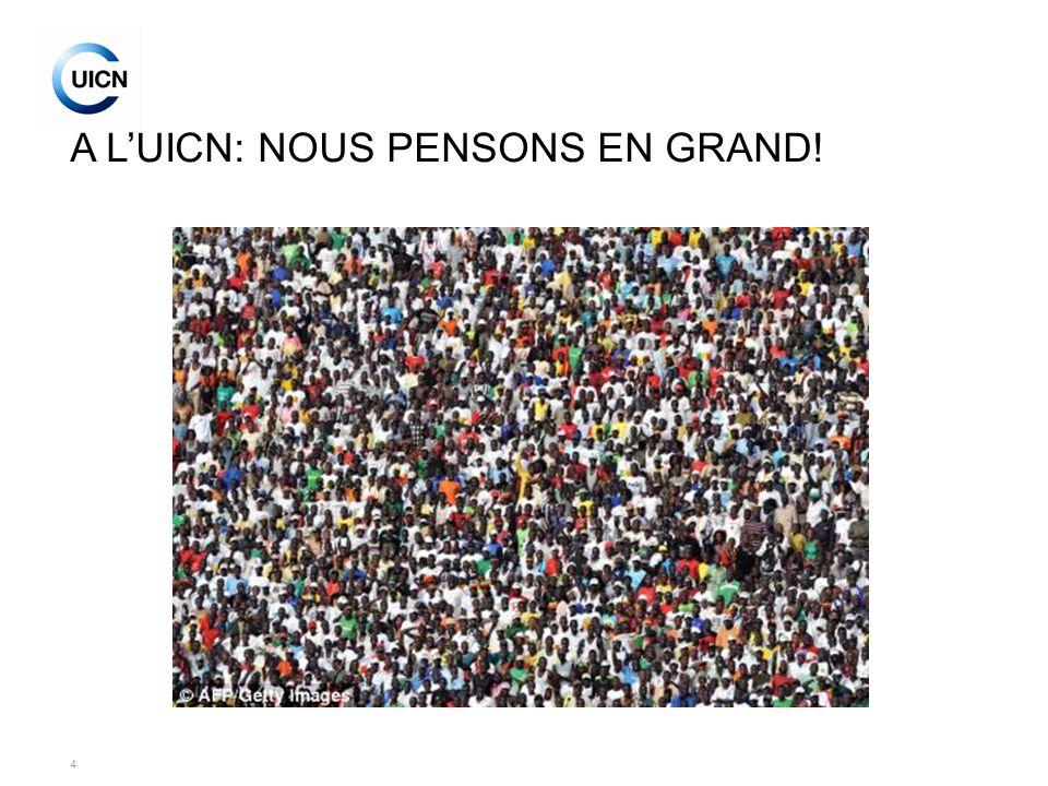 4 A LUICN: NOUS PENSONS EN GRAND!