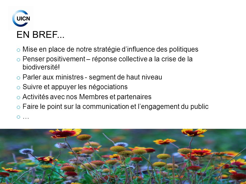 9 EN BREF... o Mise en place de notre stratégie dinfluence des politiques o Penser positivement – réponse collective a la crise de la biodiversité! o