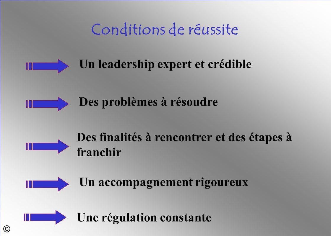 © Une régulation constante Un accompagnement rigoureux Des finalités à rencontrer et des étapes à franchir Des problèmes à résoudre Un leadership expe