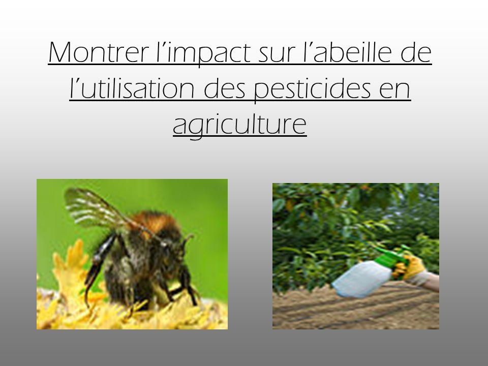 Montrer limpact sur labeille de lutilisation des pesticides en agriculture