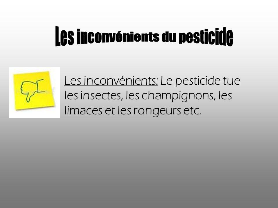 Les inconvénients: Le pesticide tue les insectes, les champignons, les limaces et les rongeurs etc.