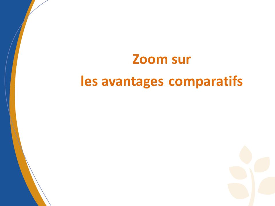 Zoom sur les avantages comparatifs