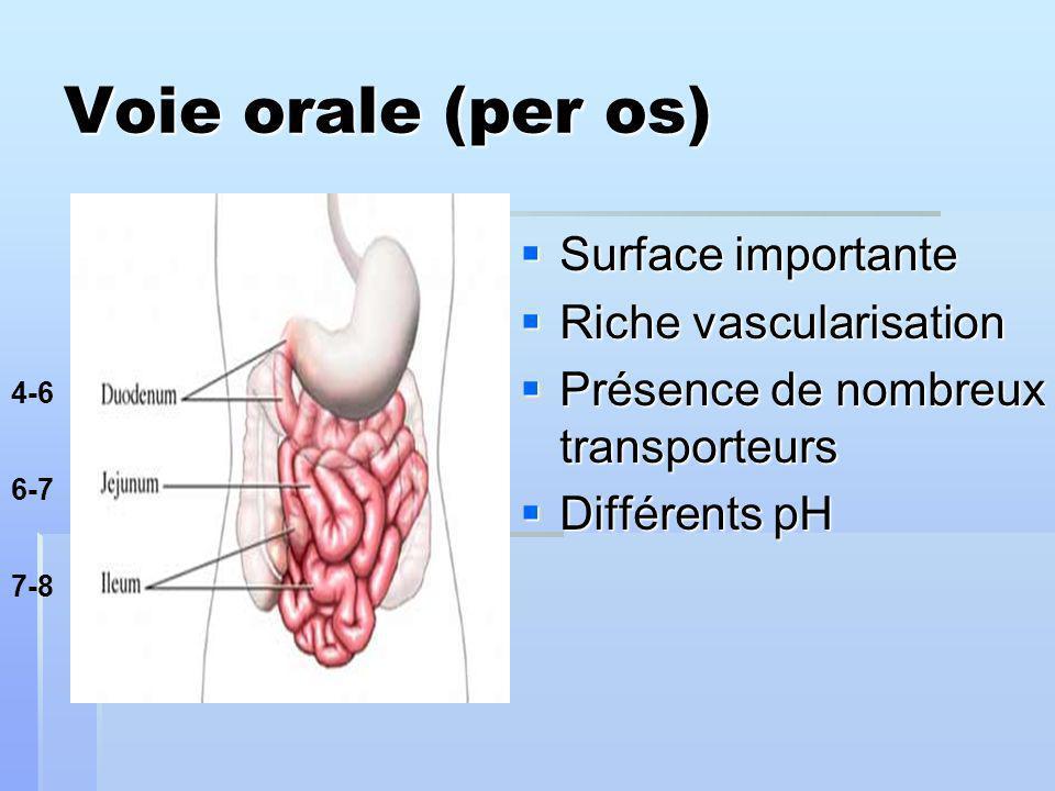 Voie orale (per os) Surface importante Surface importante Riche vascularisation Riche vascularisation Présence de nombreux transporteurs Présence de nombreux transporteurs Différents pH Différents pH 4-6 6-7 7-8