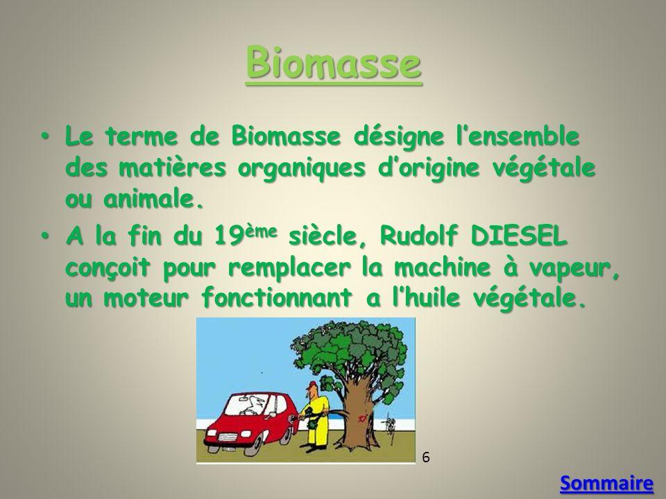Biomasse Le terme de Biomasse désigne lensemble des matières organiques dorigine végétale ou animale.