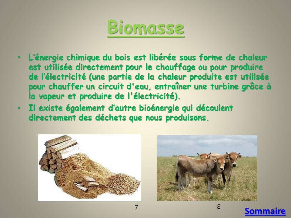 Biomasse Lénergie chimique du bois est libérée sous forme de chaleur est utilisée directement pour le chauffage ou pour produire de lélectricité (une partie de la chaleur produite est utilisée pour chauffer un circuit d eau, entraîner une turbine grâce à la vapeur et produire de l électricité).
