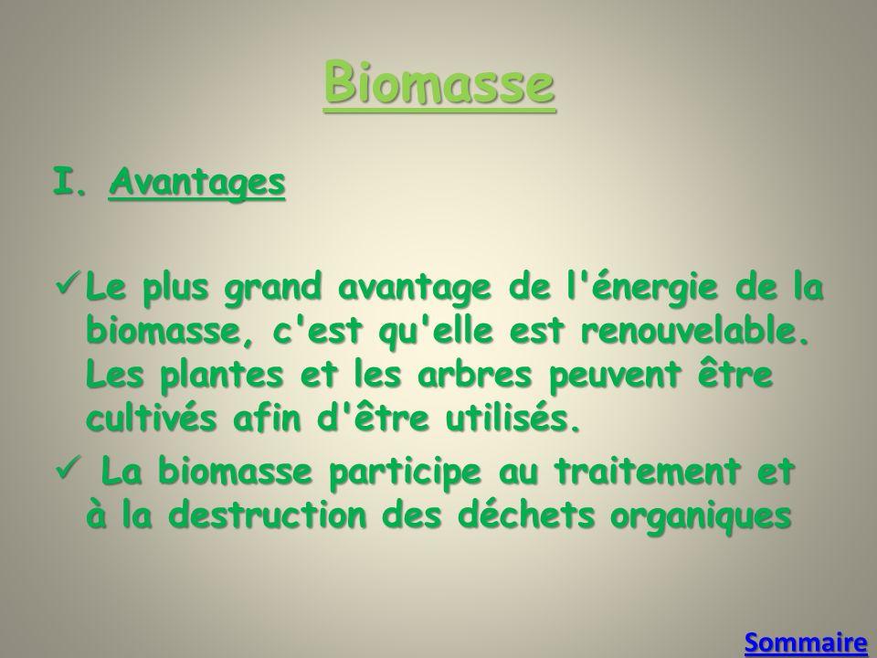 Biomasse I.Avantages Le plus grand avantage de l énergie de la biomasse, c est qu elle est renouvelable.
