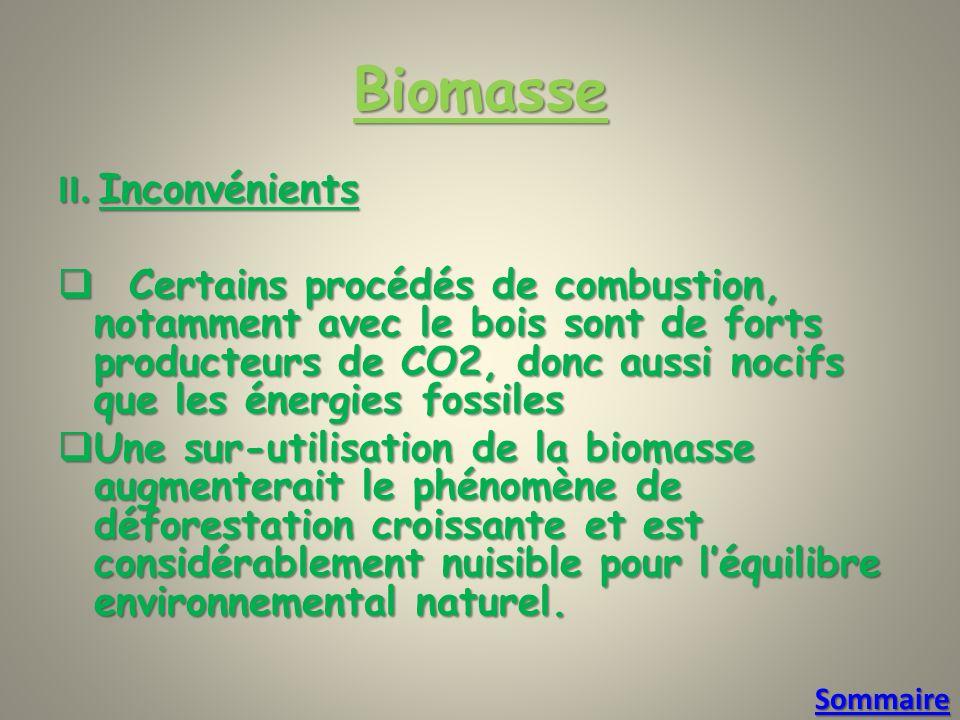 Biomasse II.