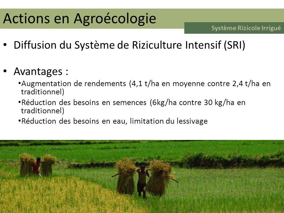 Surface mise en culture Nombre dadoptants Surface moyenne par adoptant Actions en Agroécologie Système Rizicole Irrigué