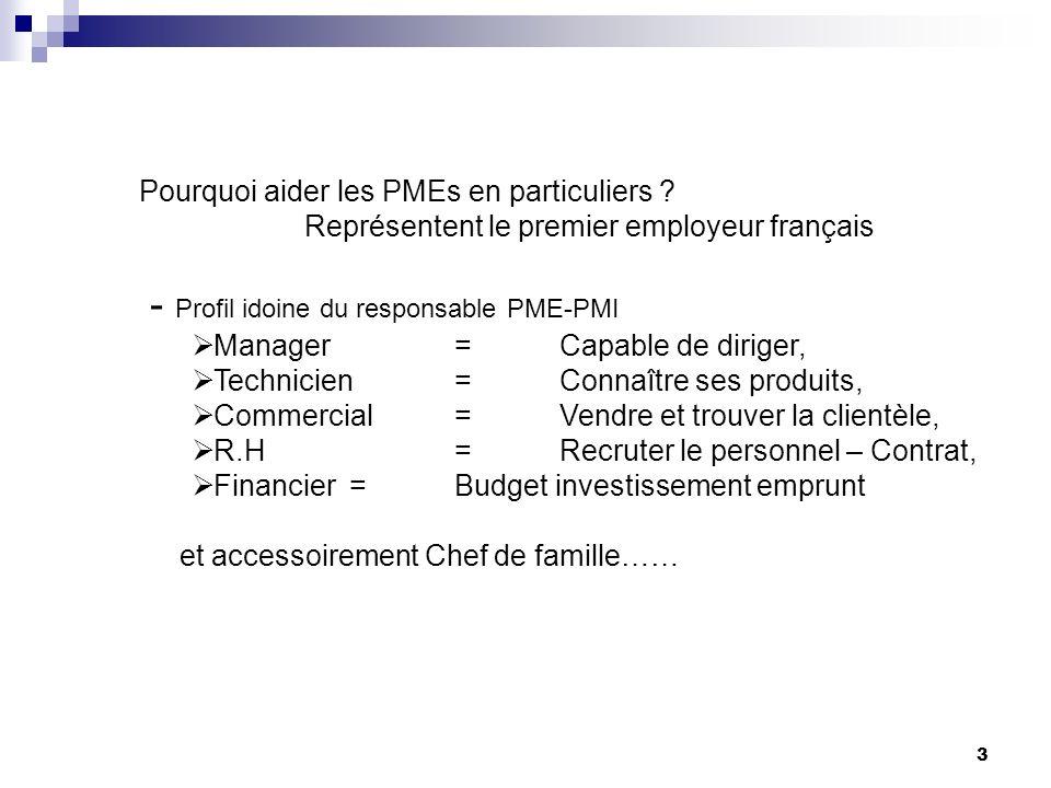 Pourquoi aider les PMEs en particuliers .