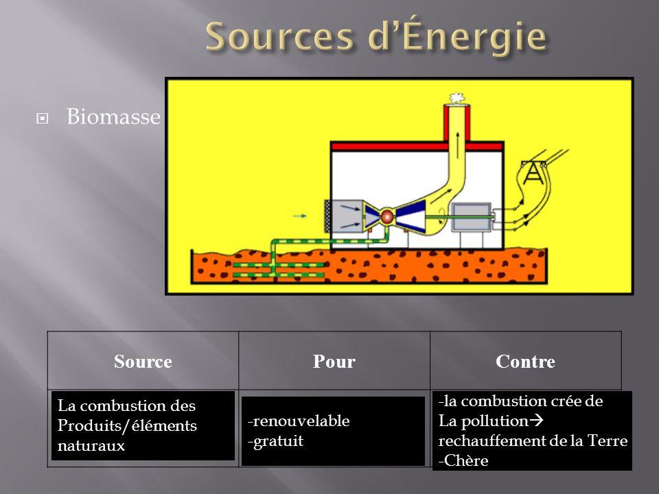 Biomasse SourcePourContre La combustion des Produits/éléments naturaux -renouvelable -gratuit -la combustion crée de La pollution rechauffement de la