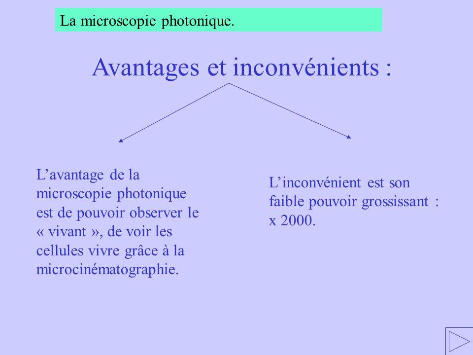 Lavantage de la microscopie photonique est de pouvoir observer le « vivant », de voir les cellules vivre grâce à la microcinématographie. Linconvénien