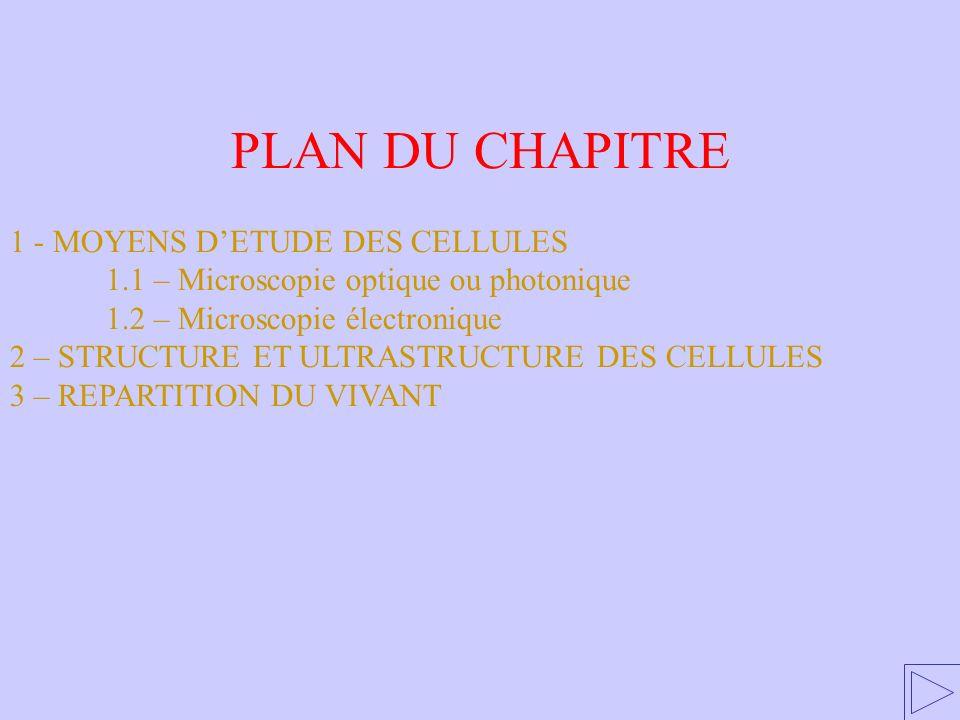 PLAN DU CHAPITRE 1 - MOYENS DETUDE DES CELLULES 1.1 – Microscopie optique ou photonique 1.2 – Microscopie électronique 2 – STRUCTURE ET ULTRASTRUCTURE