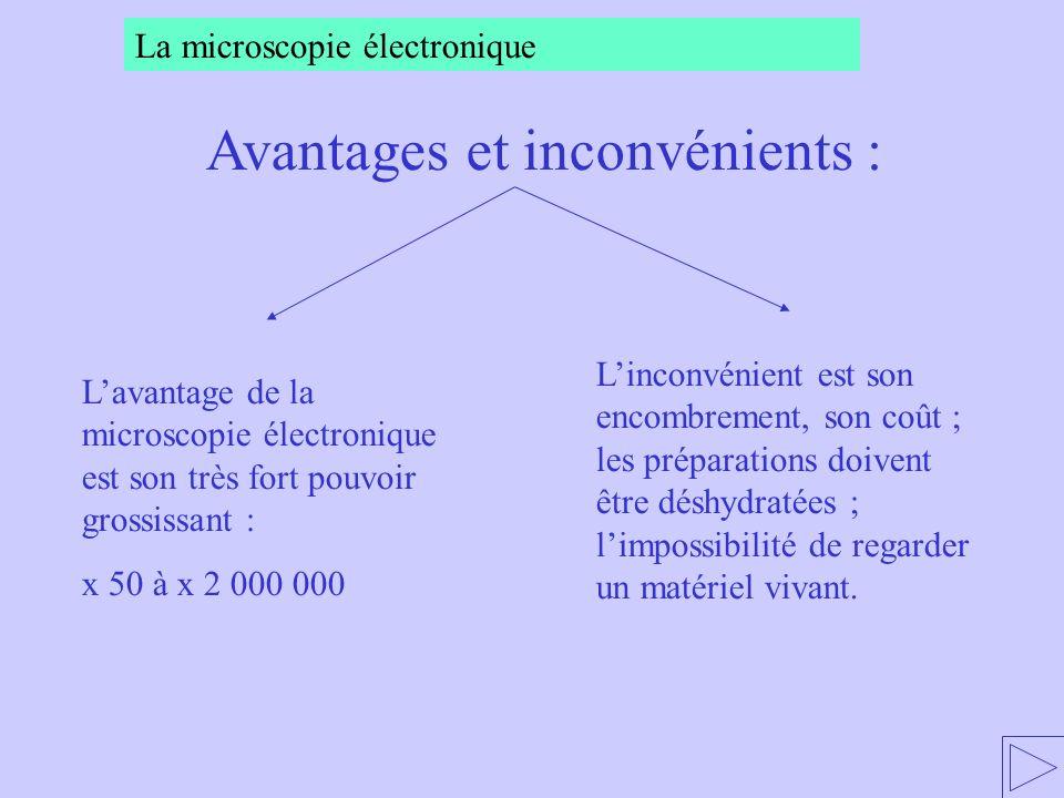 Lavantage de la microscopie électronique est son très fort pouvoir grossissant : x 50 à x 2 000 000 Linconvénient est son encombrement, son coût ; les préparations doivent être déshydratées ; limpossibilité de regarder un matériel vivant.