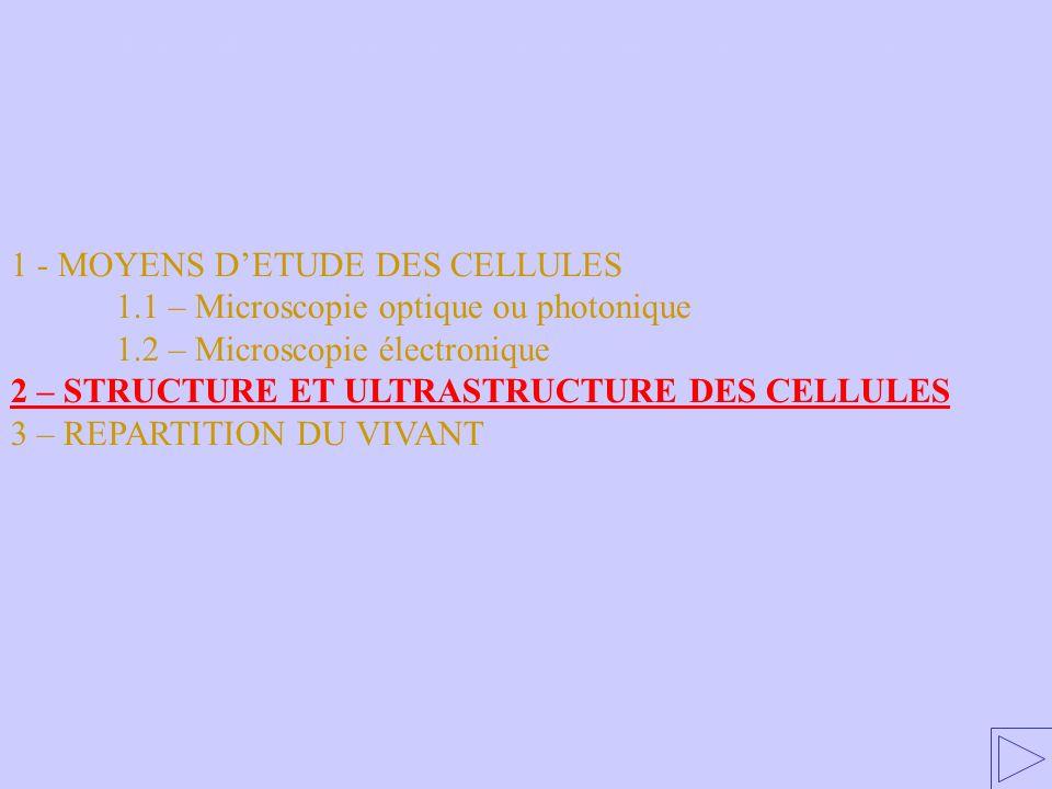 1 - MOYENS DETUDE DES CELLULES 1.1 – Microscopie optique ou photonique 1.2 – Microscopie électronique 2 – STRUCTURE ET ULTRASTRUCTURE DES CELLULES 3 – REPARTITION DU VIVANT 2 – STRUCTURE ET ULTRASTRUCTURE DES CELLULES