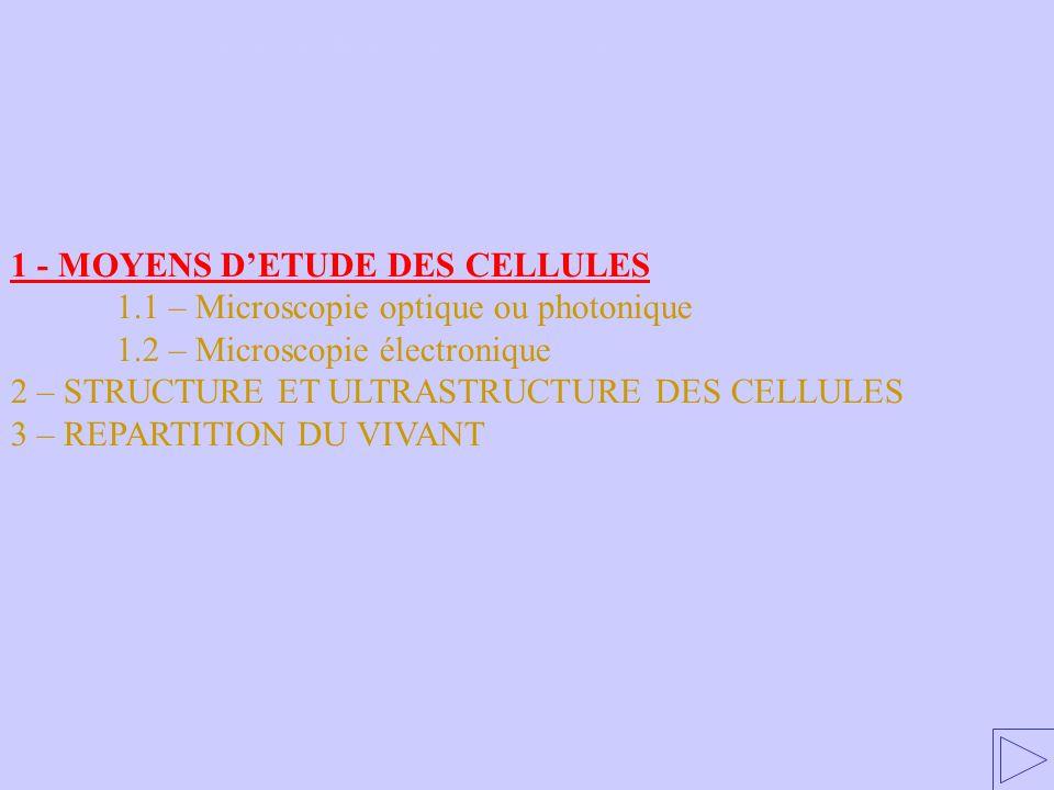 1 - MOYENS DETUDE DES CELLULES 1.1 – Microscopie optique ou photonique 1.2 – Microscopie électronique 2 – STRUCTURE ET ULTRASTRUCTURE DES CELLULES 3 – REPARTITION DU VIVANT 1 – MOYENS D ÉTUDE DES CELLULES