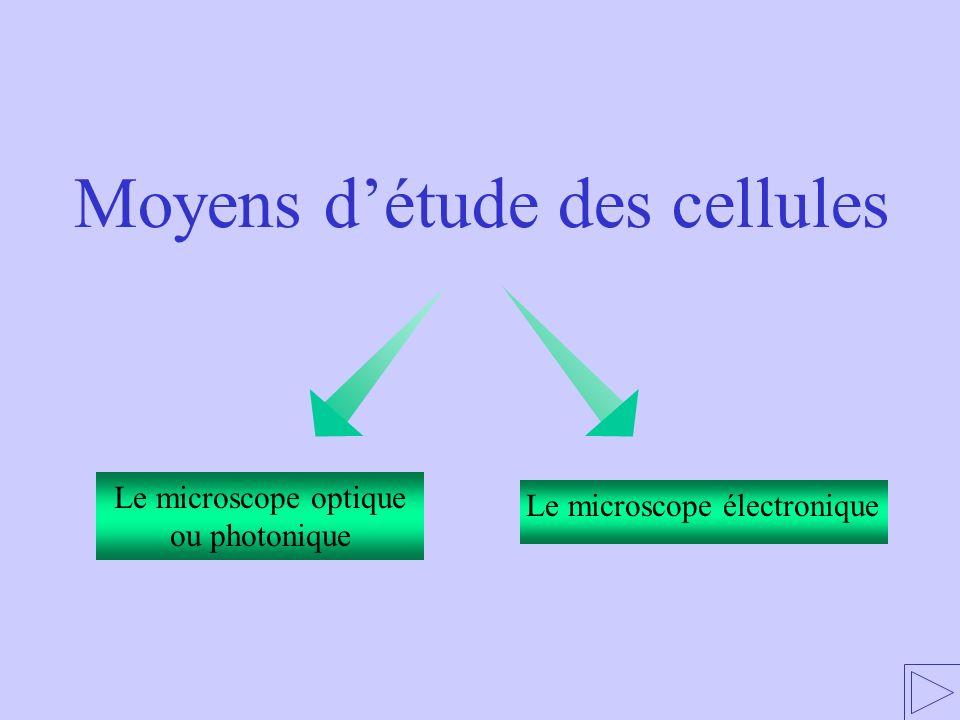 Le microscope optique ou photonique Le microscope électronique Moyens détude des cellules