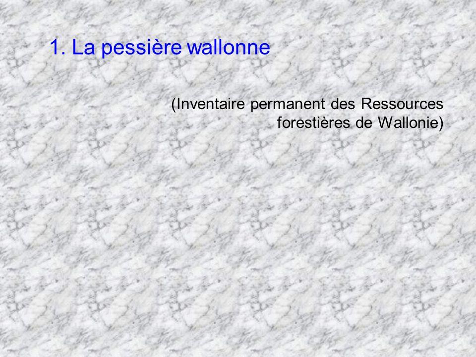 1. La pessière wallonne (Inventaire permanent des Ressources forestières de Wallonie)