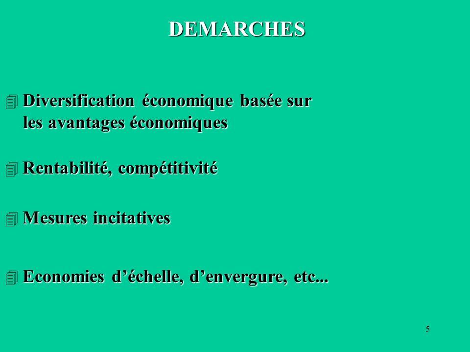 5 DEMARCHES Diversification économique basée sur les avantages économiques les avantages économiques Rentabilité, compétitivité Mesures incitatives Economies déchelle, denvergure, etc...