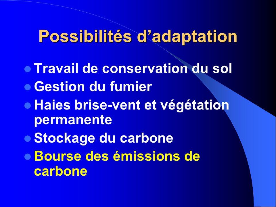 Possibilités dadaptation Travail de conservation du sol Gestion du fumier Haies brise-vent et végétation permanente Stockage du carbone Bourse des émi