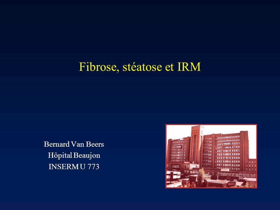 IRM en double contraste Fibrose –Hyperintense en T2 –Hypointense en T1 –Hyperintense à la phase tardive après administration de gadolinium et après injection de particules doxyde de fer IRM en double contraste : sensibilité et spécificité > 90% pour différencier F0-F2 de F3-F4 Aguirre DA et al.