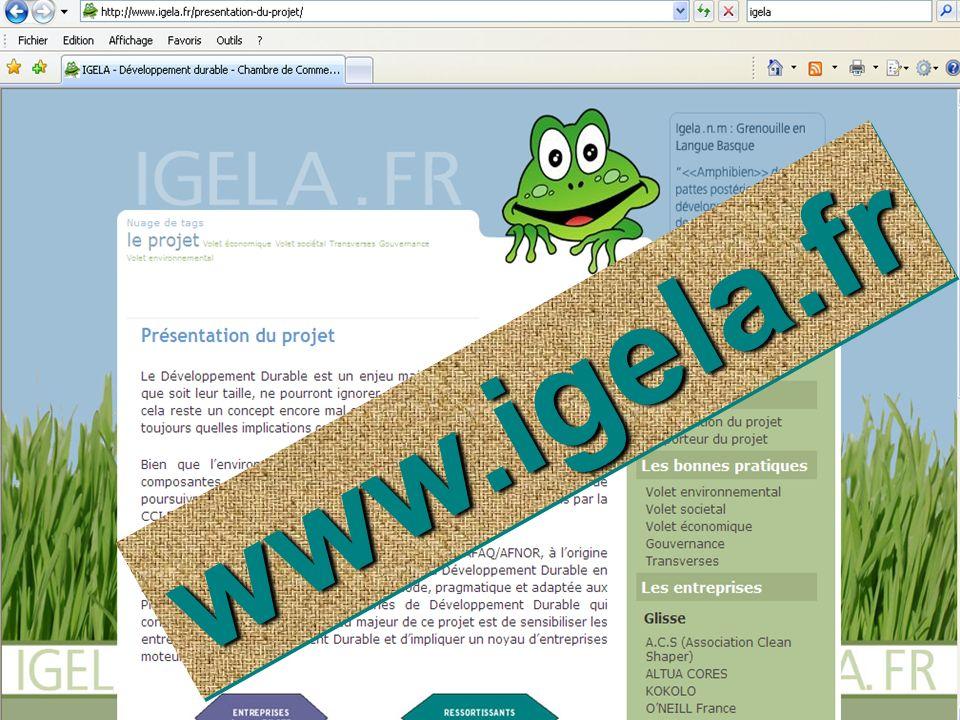 Le BLOG Développement Durable de la CCI BPB www.igela.fr w w w. i g e l a. f r