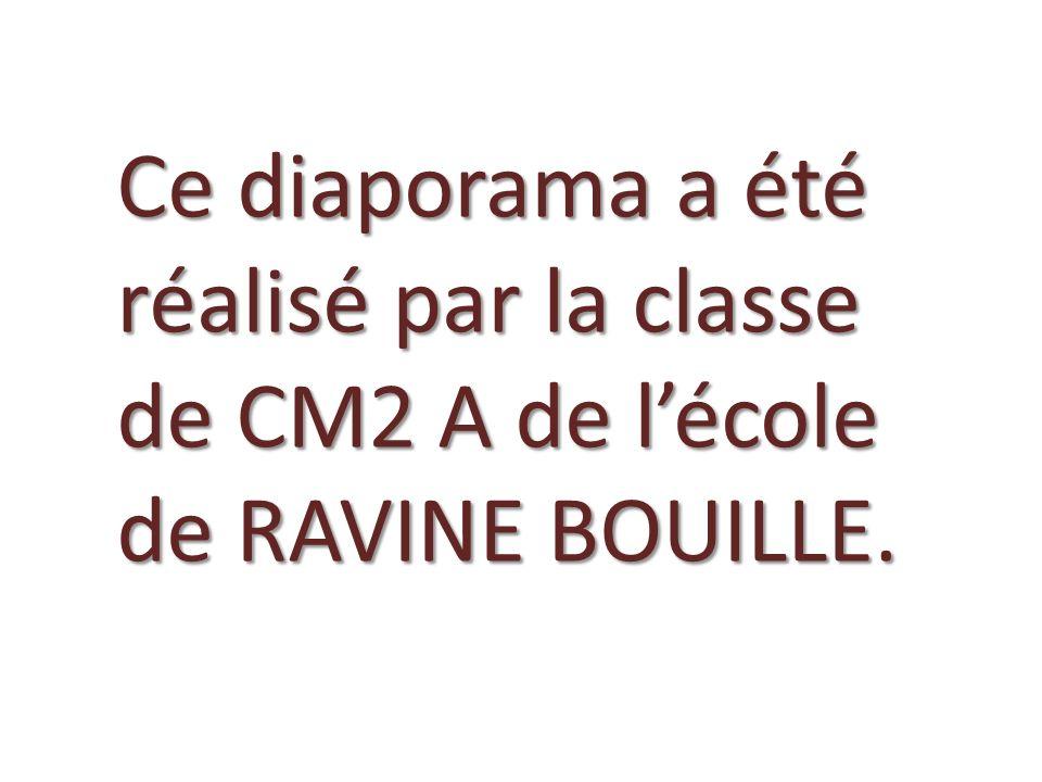 Ce diaporama a été réalisé par la classe de CM2 A de lécole de RAVINE BOUILLE.