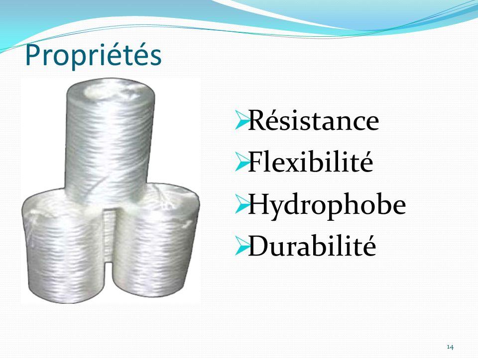 Propriétés Résistance Flexibilité Hydrophobe Durabilité 14