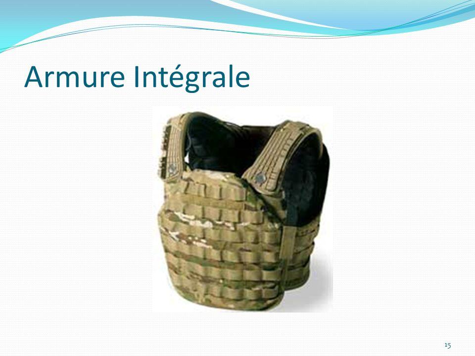 Armure Intégrale 15