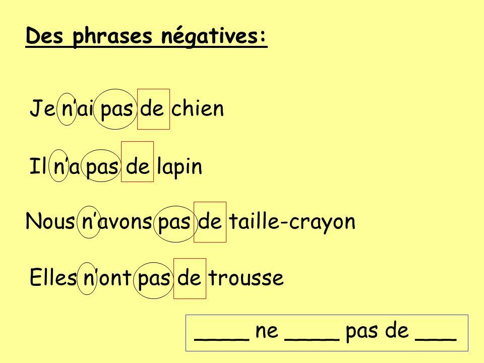 Des phrases négatives: Je nai pas de chien Il na pas de lapin Nous navons pas de taille-crayon Elles nont pas de trousse ____ ne ____ pas de ___