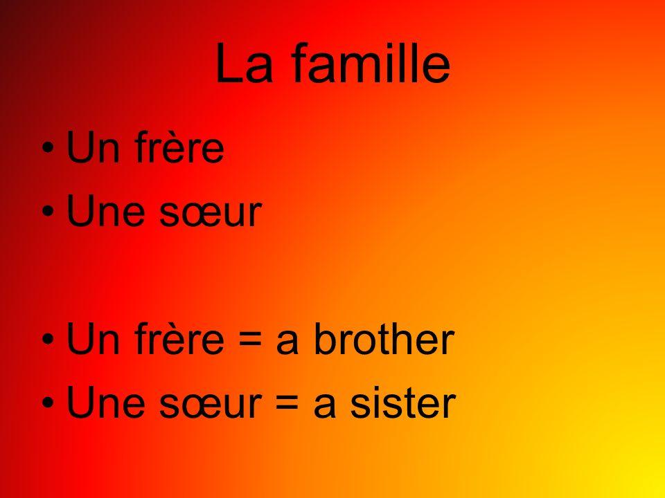 La famille Un frère Une sœur Un frère = a brother Une sœur = a sister
