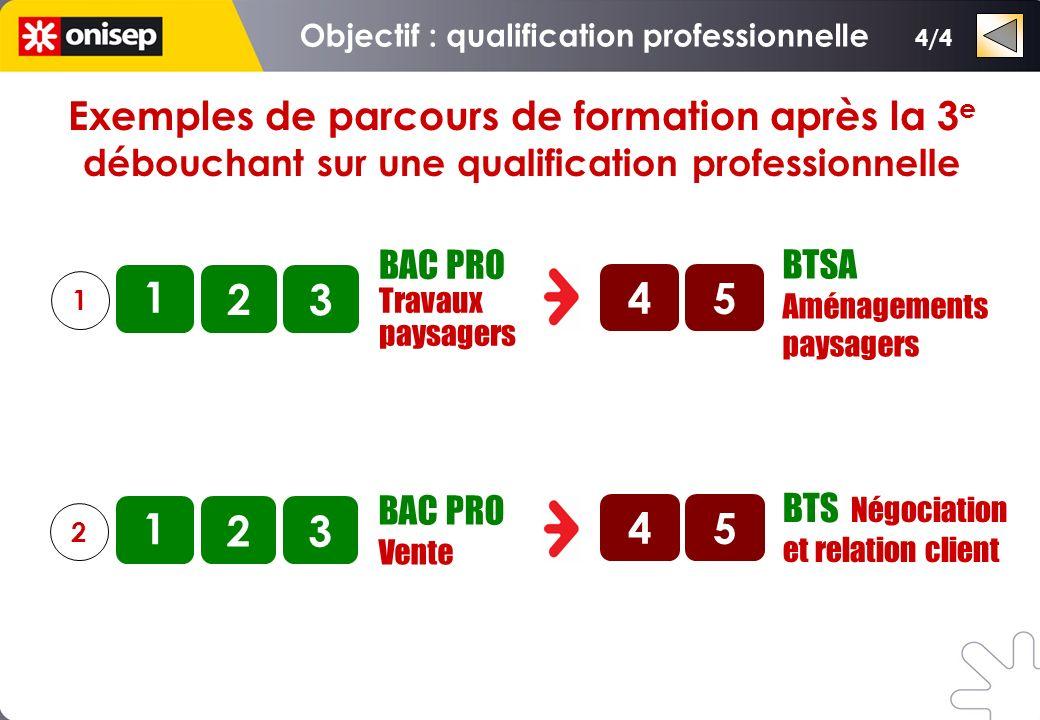 Exemples de parcours de formation après la 3 e débouchant sur une qualification professionnelle BAC PRO Technicien dusinage 1 2 1 2 3 3 BAC PRO Techni