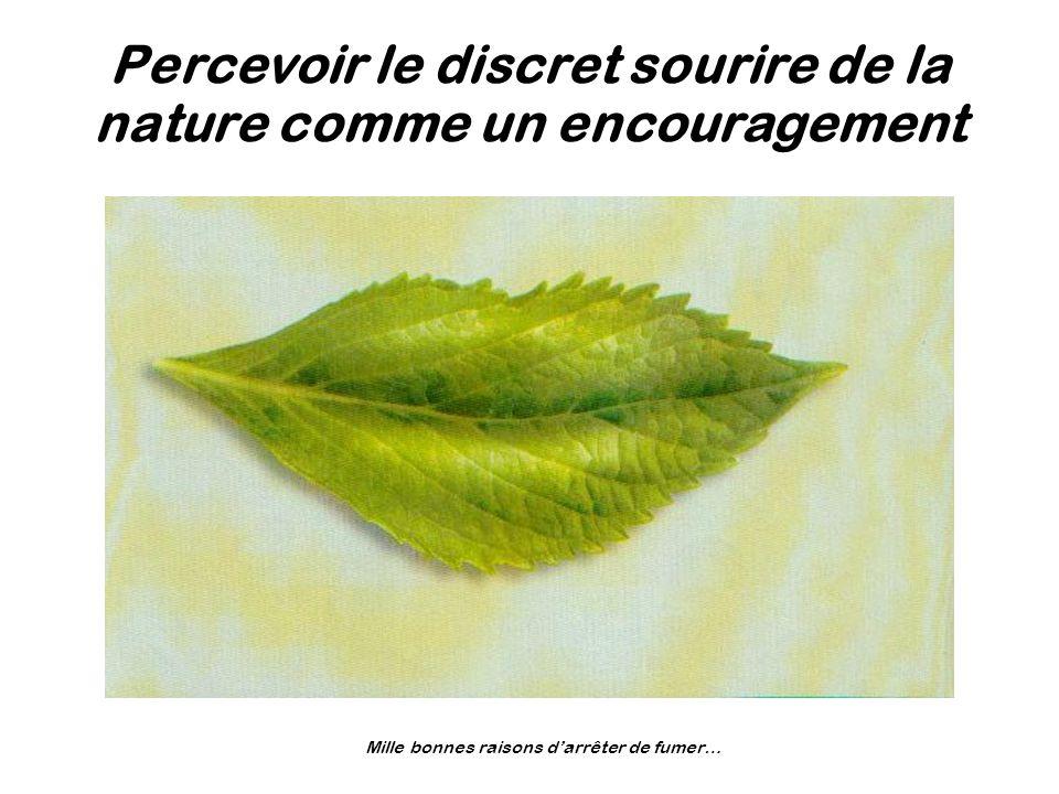 Percevoir le discret sourire de la nature comme un encouragement Mille bonnes raisons darrêter de fumer…