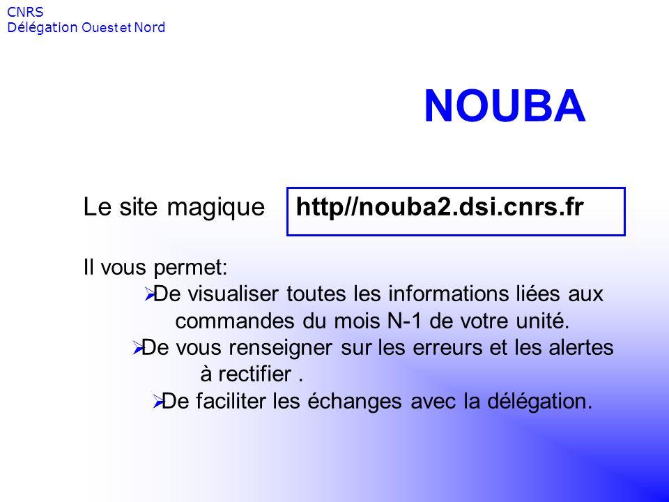 NOUBA Le site magique http//nouba2.dsi.cnrs.fr Il vous permet: De visualiser toutes les informations liées aux commandes du mois N-1 de votre unité. D
