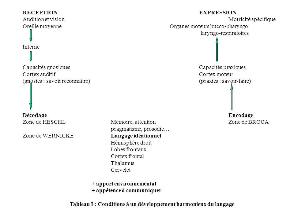 RECEPTIONEXPRESSION Audition et visionMotricité spécifique Oreille moyenneOrganes moteurs bucco-pharyngo laryngo-respiratoires Interne Capacités gnosi