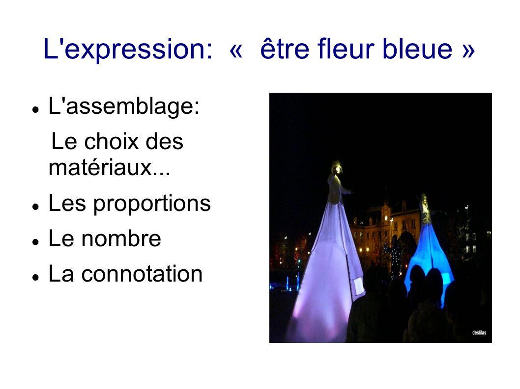 L'expression: « être fleur bleue » L'assemblage: Le choix des matériaux... Les proportions Le nombre La connotation